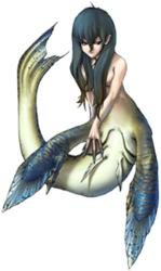 Mermaid's Photo